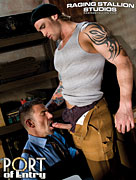 Raging Stallion, Port Of Entry